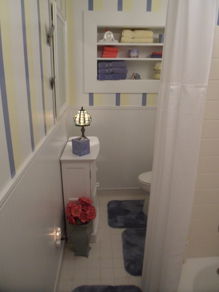 Roanoke Old Bathroom before New Remodeling Job Completed
